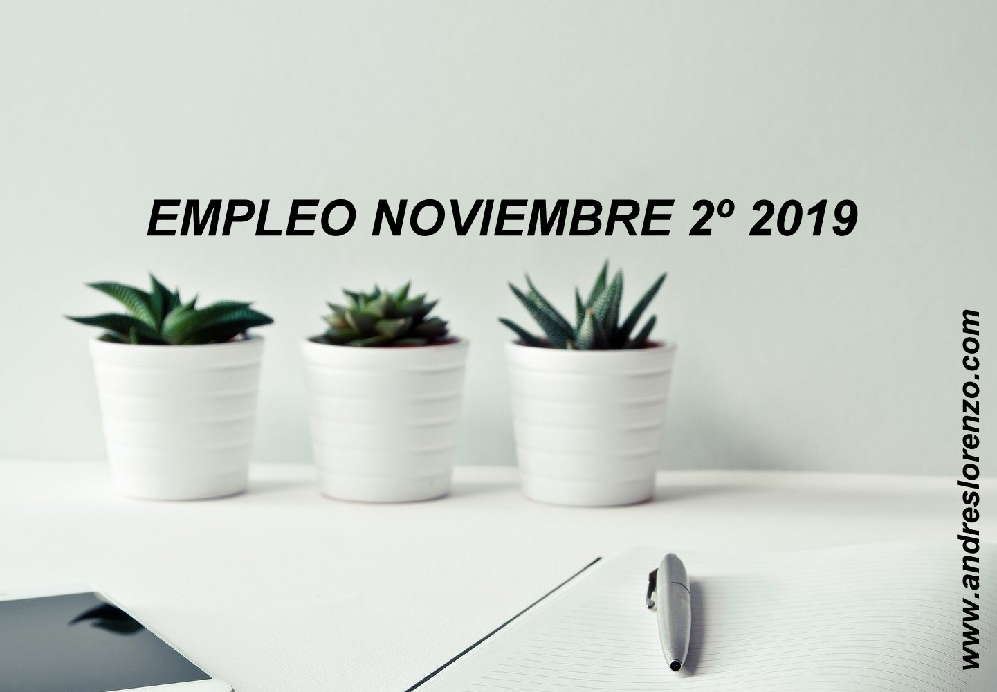 EMPLEO NOVIEMBRE 2º 2019